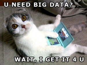 Big-Data-Kitty