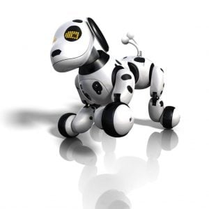 New Grads: Send a robo-dog to job interviews! - Ask The Headhunter®