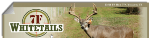 7f-whitetails